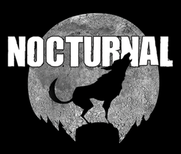 Nocturnal Customs Ltd